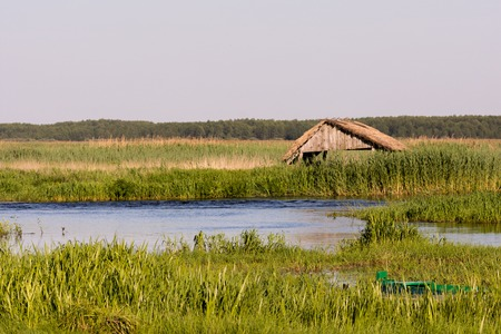 narew: Narew National Park