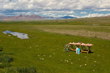 Typical mongolian landscape with campsite