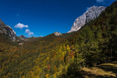 Autumn mood in the Triglav National Park, Tolmin, GoriÃ…Â¡ka, Slovenia, Europe Stock Photo