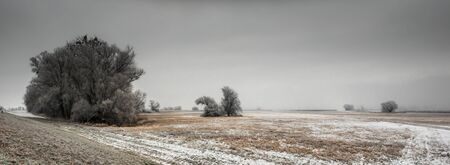 Lower Oder Valley National Park, winter, sun, snow, Criewen Brandenburg Germany