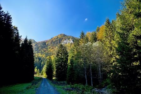 ruzomberok: Ruzomberok - Cutkovska Valley, view of Goat peak.