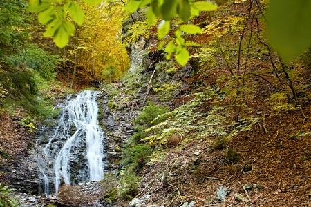 ruzomberok: Ruzomberok - Cutkovska Valley, great view of Jamisne watterfall. Forest, trees, water and autumn leaves