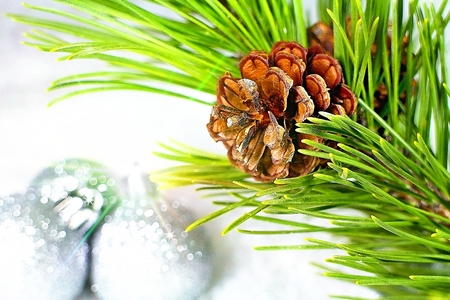 Christmas background with pine cone and light effects. Stockfoto