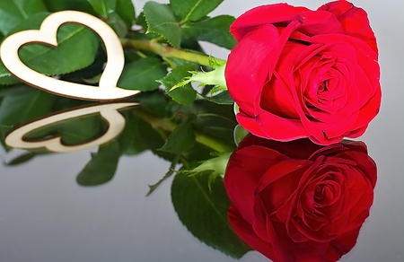 Red roses with heart with reflection in mirror. For lovers. Roses, heart, leaves and mirror. Romantic atmosphere. Imagens