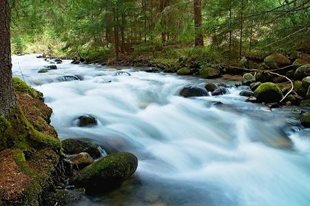 Wild mountain water in the Dubravska valley in Slovakia.