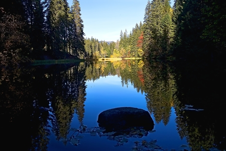 Stone in the middle of the trees mirroring the water level of the Vrbicke lake. Imagens