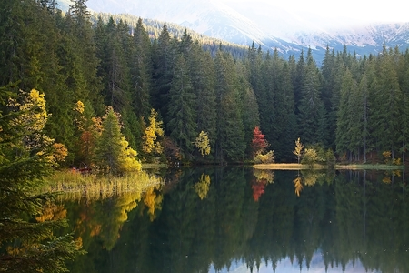 Island with trees in autumn colors with Low Tatras background. Vrbicke lake in Demanovska valley in Slovakia. Imagens