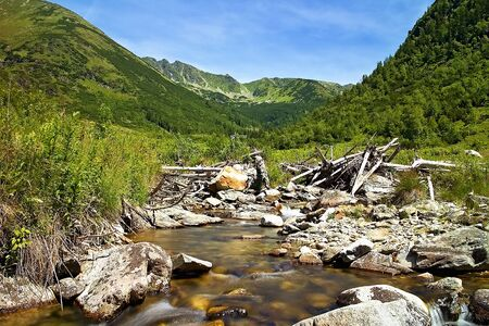 Stones in mountain river in the middle of Ziarska valley in Slovakia.
