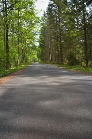 Velka Fatra, Gader Valley - Asphalt road stretching across the Gader valley.