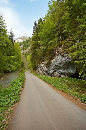 Great Fatra, Gader Valley - Asphalt road stretching across the Gader valley.