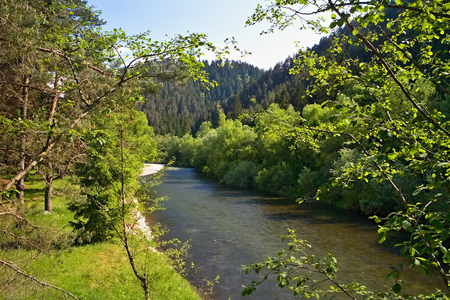 Borova Sihot - Liptovsky Hradok: view from the rocking bridge over the river Vah. Water, trees and rocking bridge.