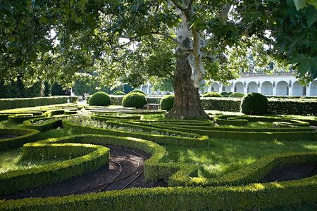 Typical plant architecture in the Flower Garden in Czech Kromeriz. Beautiful garden.
