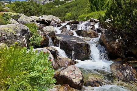 Mountain stream flowing under Skok waterfall in Mlynicka valley. Imagens - 132065737