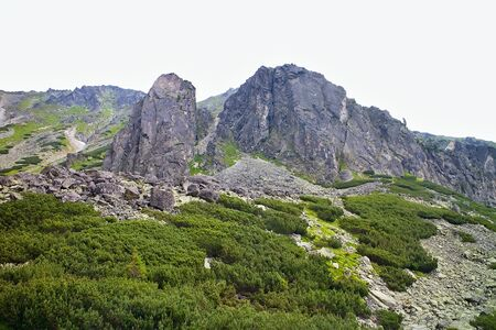 Surrounding scenery while hiking to the Skok Waterfall in the High Tatras. Imagens - 132066006