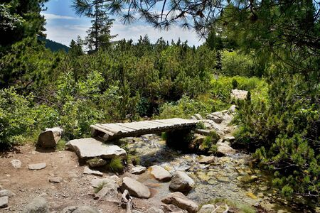 A small wooden bridge on the sidewalk in Mlynicka valley at the ascent to the Skok waterfall. The best of Slovakia.