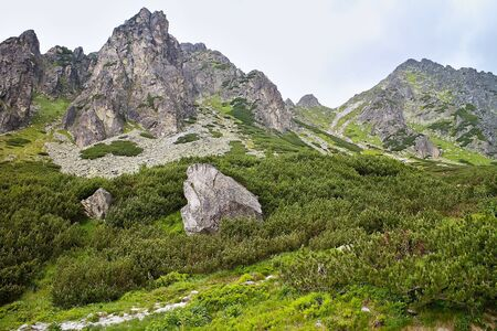 Surrounding scenery while hiking to the Skok Waterfall in the High Tatras. Beautiful Slovakia. Imagens