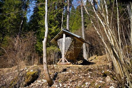 Feeder for forest animals in Ilanovska valley in Liptov - Slovakia.