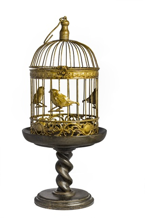 confined: A gold and brown birdcage sitting on top of a decorative pedestal stand.