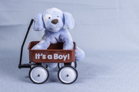 A stuffed animal dog sitting in a red wagon announcing the arrival of a newborn boy. Stock Photo