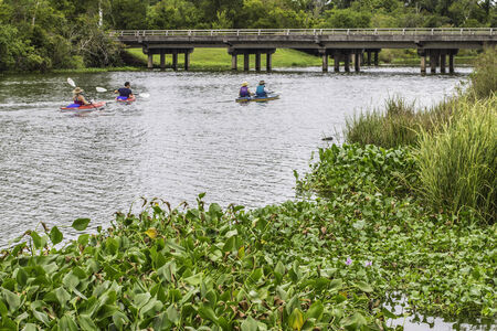 A river photo showing off signs of wildlife and people kayaking. photo
