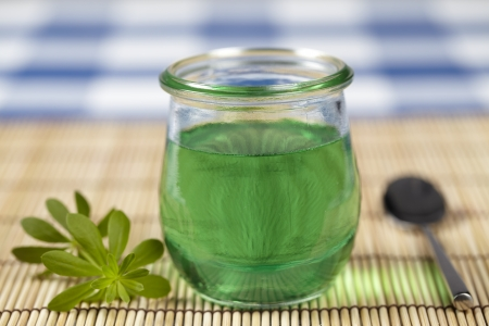 Woodruff jelly with branch Stock Photo - 19242325