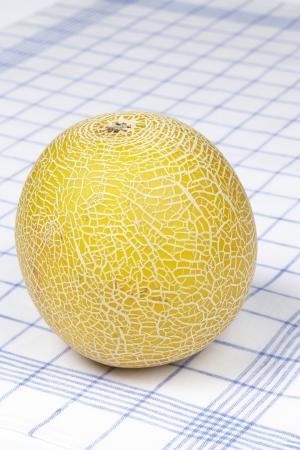 dishtowel: Galia melon on a dishtowel
