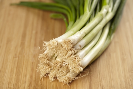 Early ONIONS leek on a cutting board