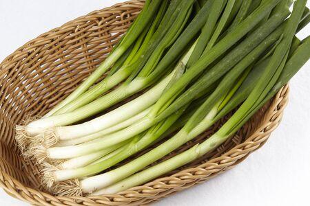 earlier: Earlier basket with leeks ONIONS