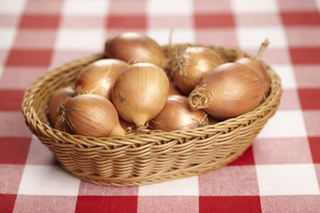 Basket of onions on checked tablecloth