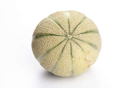 exempted: Galia melon exempted on white background   Stock Photo