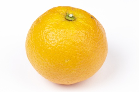 exempted: An orange exempted on a white background.