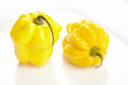 Habanero chili pepper on a white porcelain plate with reflection. Stock Photo