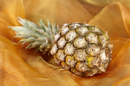 exempted: A laying pineapple exempted on  a colorful background (like popart).