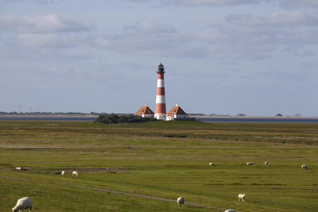 westerhever: The Westerhever light house (Germany) taken at daylight with some sheeps on the dyke.