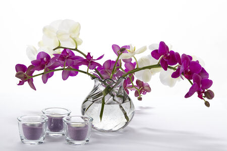 A Bouquet Of White And Purple Orchids In A Vase Stock Photo Picture