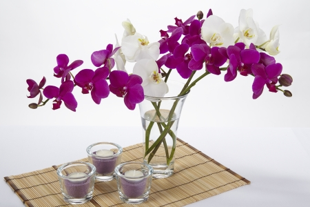 A Bouquet Of White And Purple Orchids In A Vase The Vase Is Stock