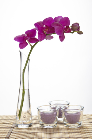 A purple orchid stands into a tall vase of glass filled half with water  The vase stands on a place mat of bamboo and is decorated with some tealights  Stock Photo