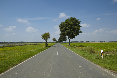 A landscape with a straight road, trees and grassland taken by fine weather with a blue sky and little white cumulus clouds