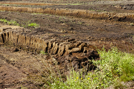A drained moor landscape with sods of peat