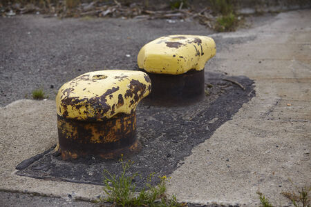 pollard: An old double pollard embedded into cement and asphalt taken in a rotten doxkland. Stock Photo