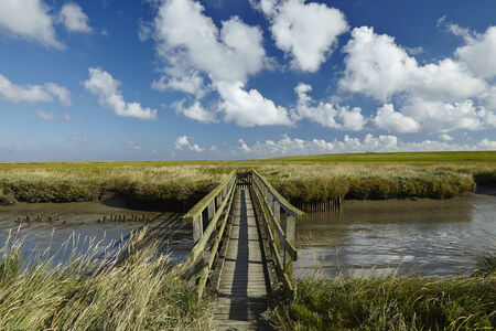 Landscape with salt meadows anad the light house Westerhever located near the coast of the North Sea taken on a sunny morning. This landscape is located near the coast of the North Sea (North Frisia, Germany, Schleswig Holstein): Stock Photo
