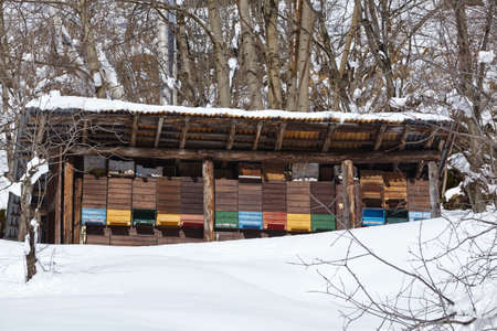 Some beehives near the Gotthard massif in the Swiss canton Ticino (Tessin) taken in winter (February) with a bright blue sky and much of snow.