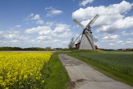 The windmill Bierde (Petershagen, Germany) is a dutch type of windmill and is part of the Westphalia Mill Street (Westfaelische Muehlenstrasse). In the foreground is a yellow blossoming field of canola.