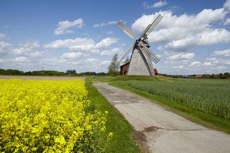 coleseed: The windmill Bierde (Petershagen, Germany) is a dutch type of windmill and is part of the Westphalia Mill Street (Westfaelische Muehlenstrasse). In the foreground is a yellow blossoming field of canola.