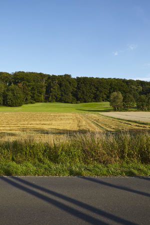 ruhr: A landscape with fields, blue sky and border of a wood photographed in the Ruhr Area near Essen-Werden (Germany, Northrhine Westphalia).