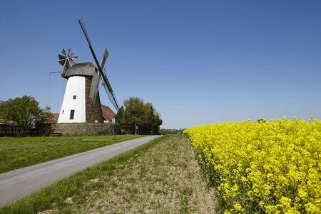 The windmill Eickhorst (Hille, Northrhine Westphalia, Germany) is part of the Westphalia Mill Street.
