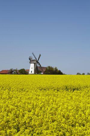 De molen Eickhorst (Hille, Noordrijn Westfalen, Duitsland) maakt deel uit van de Westfalen Mill Street. Stockfoto