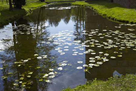 The moated castle Raesfeld (Germany, Northrhine Westphalia, County Borken) reflects in the water of the moat. Editorial