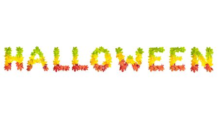 colorfully: photo of colorfully leaves in shape of word HALLOWEEN on white background