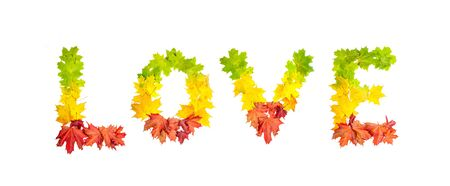 colorfully: photo of colorfully leaves in shape of word LOVE on white background Stock Photo
